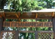 Двухдневка в НПП Гомольшанские леса