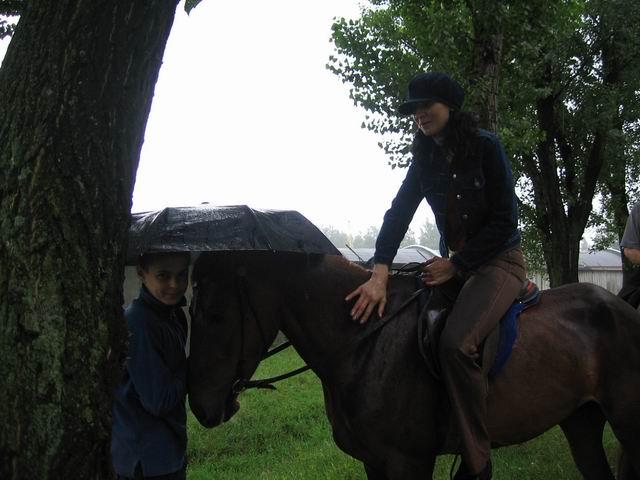 Самая умная лошадь на свете. Всадник под дождем - лошадь под зонтом